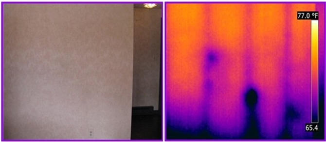 termites detected by infrared